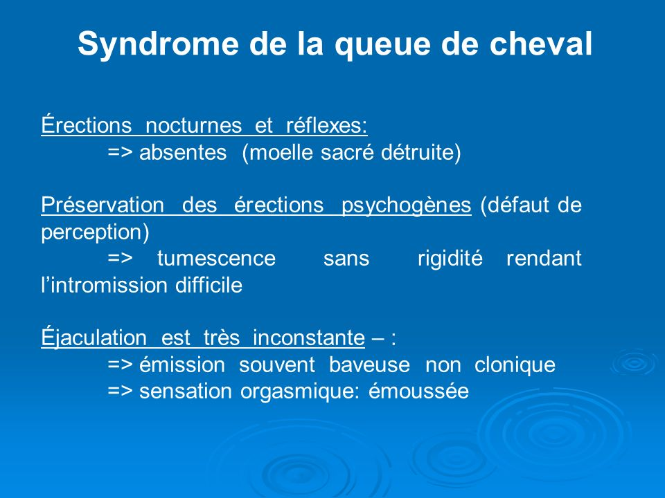 Syndrome de la queue de cheval Érections nocturnes et réflexes: => absentes (moelle sacré détruite) Préservation des érections psychogènes (défaut de