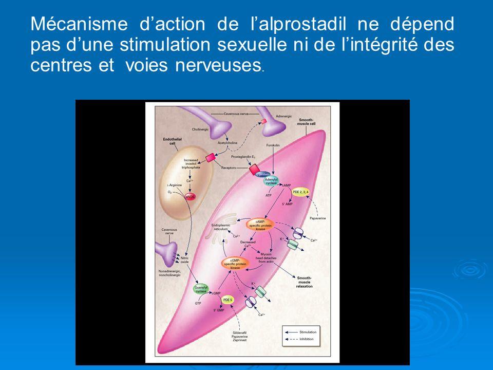 Mécanisme daction de lalprostadil ne dépend pas dune stimulation sexuelle ni de lintégrité des centres et voies nerveuses.
