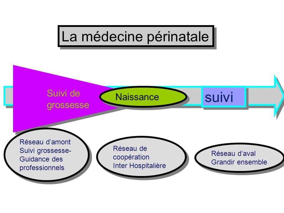 Suivi degrossesse Naissance La médecine périnatale Réseau daval Grandir ensemble Réseau daval Grandir ensemble suivi Réseau de coopération Inter Hospi