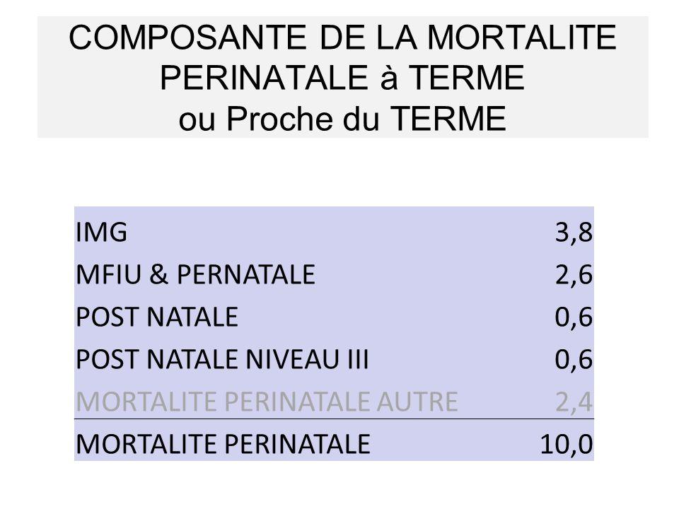 COMPOSANTE DE LA MORTALITE PERINATALE à TERME ou Proche du TERME IMG3,8 MFIU & PERNATALE2,6 POST NATALE0,6 POST NATALE NIVEAU III0,6 MORTALITE PERINAT