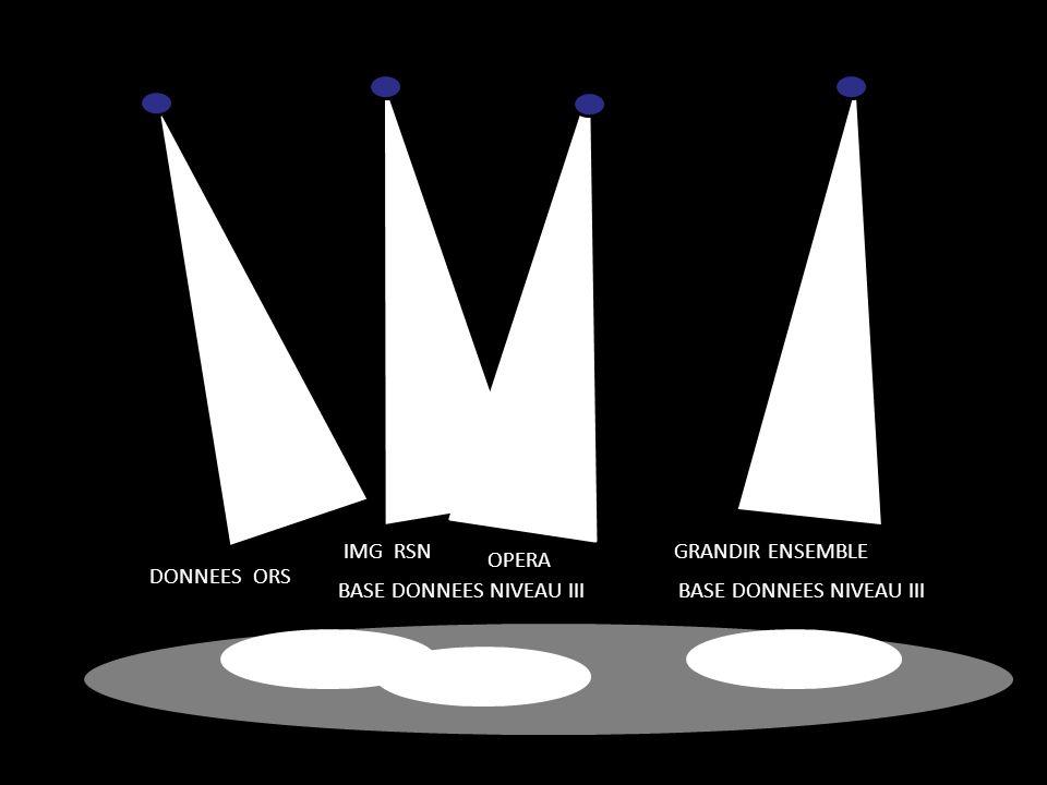 DONNEES ORS OPERA IMG RSN GRANDIR ENSEMBLE BASE DONNEES NIVEAU III