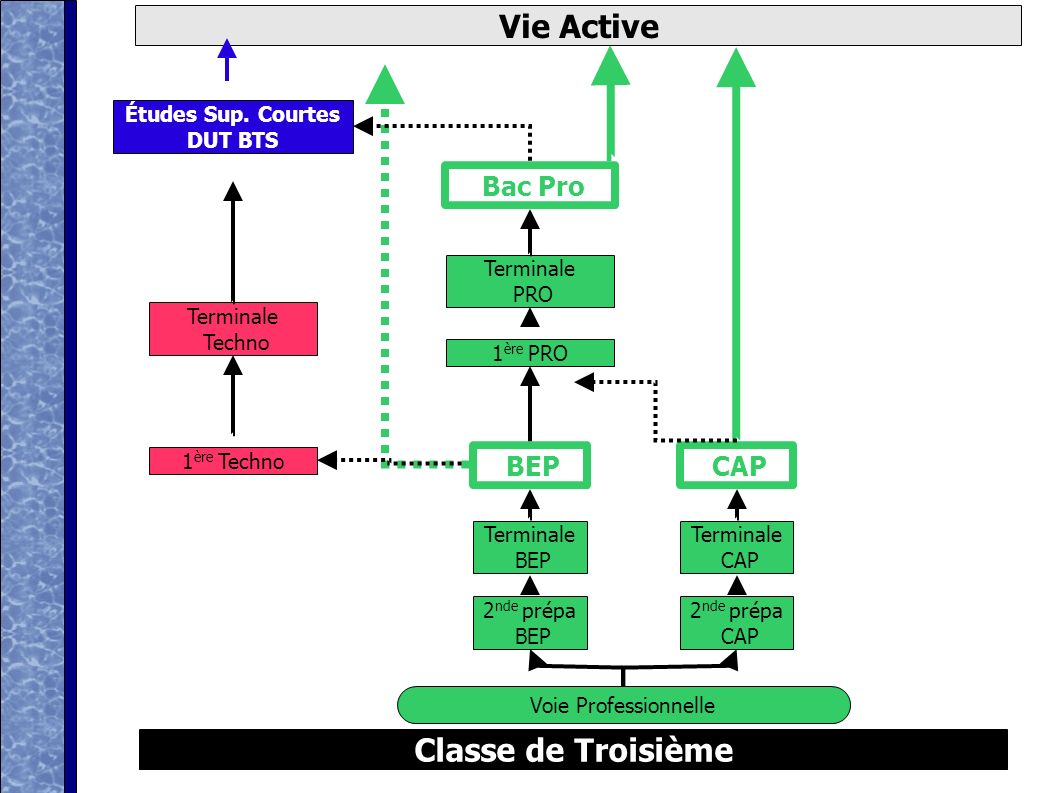 D après ONISEP Classe de Troisième Vie Active Voie Technologique 2 nde Générale et Technologique Bac Techno 1 ère Techno Terminale Techno Études Sup.