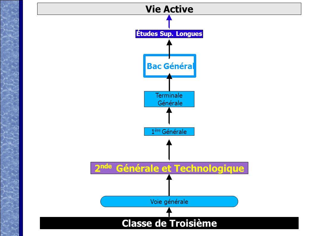 D après ONISEP Classe de Troisième Vie Active 2 nde Générale et Technologique Voie générale Bac Général 1 ère Générale Terminale Générale Études Sup.