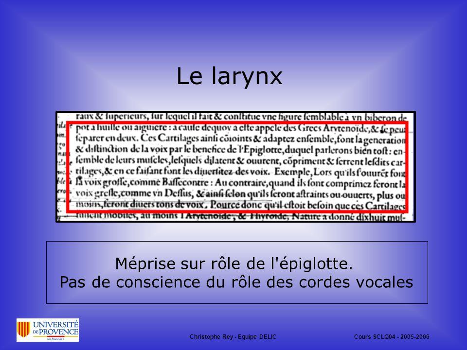 Le larynx Méprise sur rôle de l épiglotte.