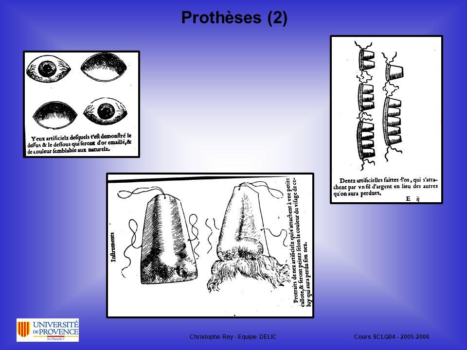 Prothèses (2) Christophe Rey - Equipe DELICCours SCLQ04 - 2005-2006