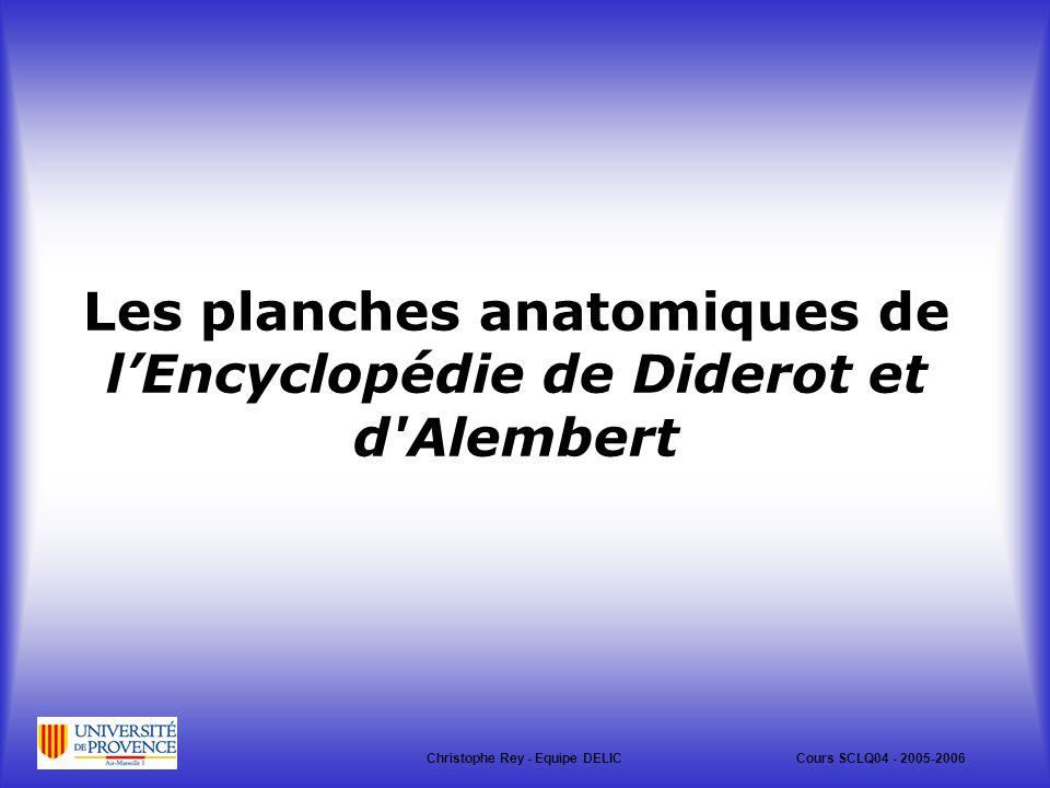 Les planches anatomiques de lEncyclopédie de Diderot et d Alembert Christophe Rey - Equipe DELICCours SCLQ04 - 2005-2006