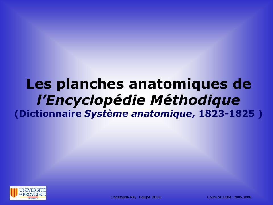 Les planches anatomiques de lEncyclopédie Méthodique (Dictionnaire Système anatomique, 1823-1825 ) Christophe Rey - Equipe DELICCours SCLQ04 - 2005-2006