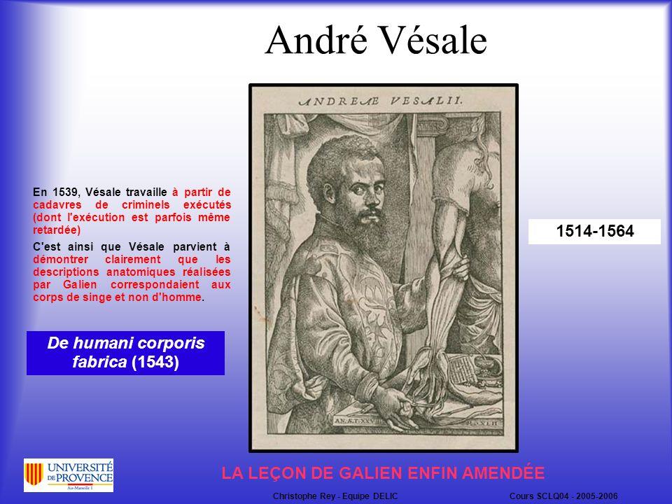 André Vésale 1514-1564 En 1539, Vésale travaille à partir de cadavres de criminels exécutés (dont l exécution est parfois même retardée) C est ainsi que Vésale parvient à démontrer clairement que les descriptions anatomiques réalisées par Galien correspondaient aux corps de singe et non d homme.
