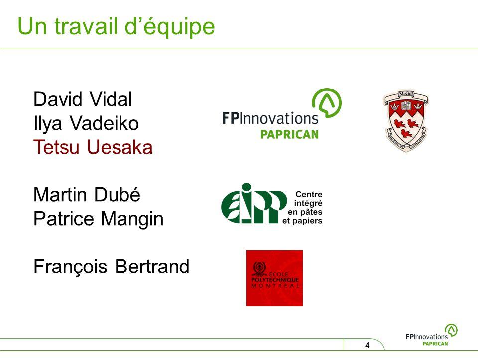 4 Un travail déquipe David Vidal Ilya Vadeiko Tetsu Uesaka Martin Dubé Patrice Mangin François Bertrand