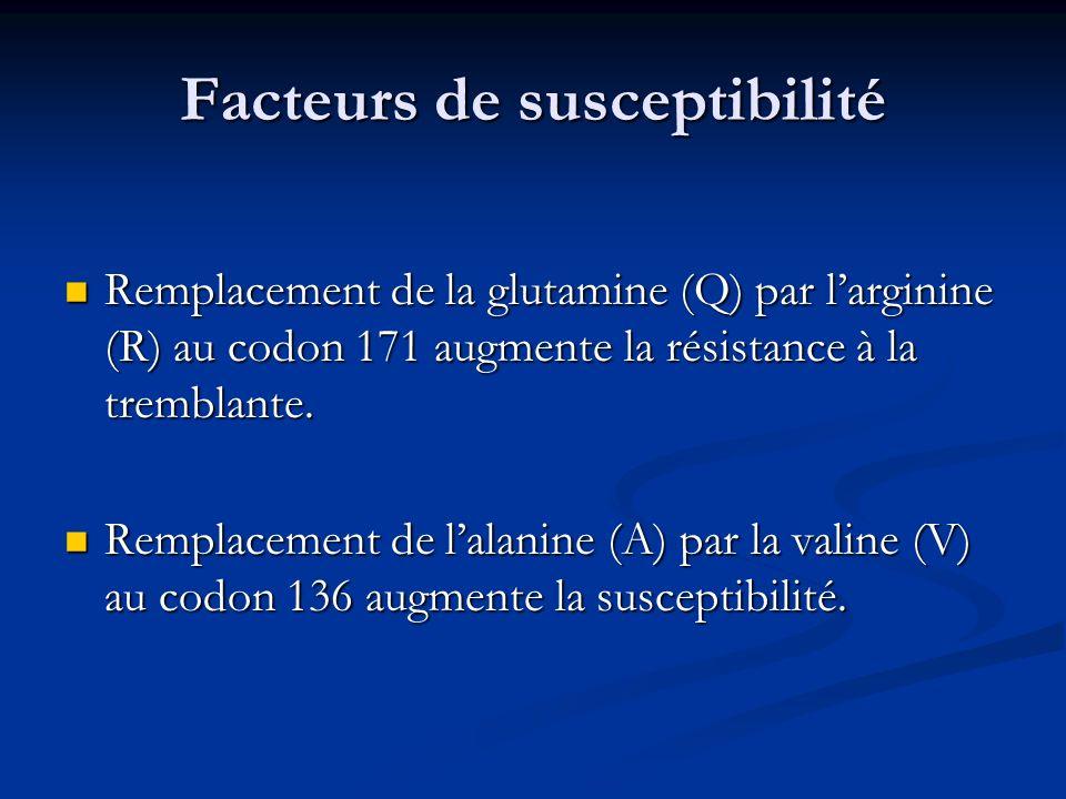 Facteurs de susceptibilité Remplacement de la glutamine (Q) par larginine (R) au codon 171 augmente la résistance à la tremblante. Remplacement de la