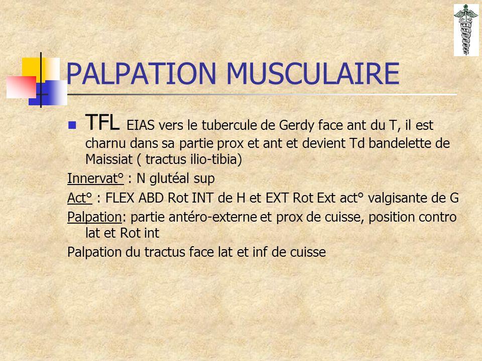 PALPATION MUSCULAIRE TFL EIAS vers le tubercule de Gerdy face ant du T, il est charnu dans sa partie prox et ant et devient Td bandelette de Maissiat ( tractus ilio-tibia) Innervat° : N glutéal sup Act° : FLEX ABD Rot INT de H et EXT Rot Ext act° valgisante de G Palpation: partie antéro-externe et prox de cuisse, position contro lat et Rot int Palpation du tractus face lat et inf de cuisse
