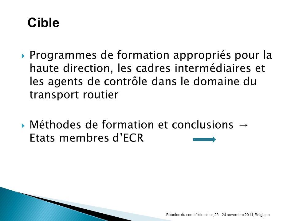 Programmes de formation appropriés pour la haute direction, les cadres intermédiaires et les agents de contrôle dans le domaine du transport routier M