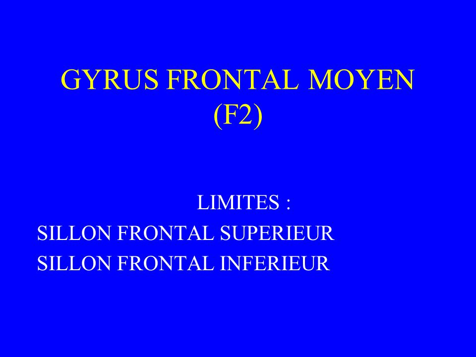 GYRUS FRONTAL MOYEN (F2) LIMITES : SILLON FRONTAL SUPERIEUR SILLON FRONTAL INFERIEUR