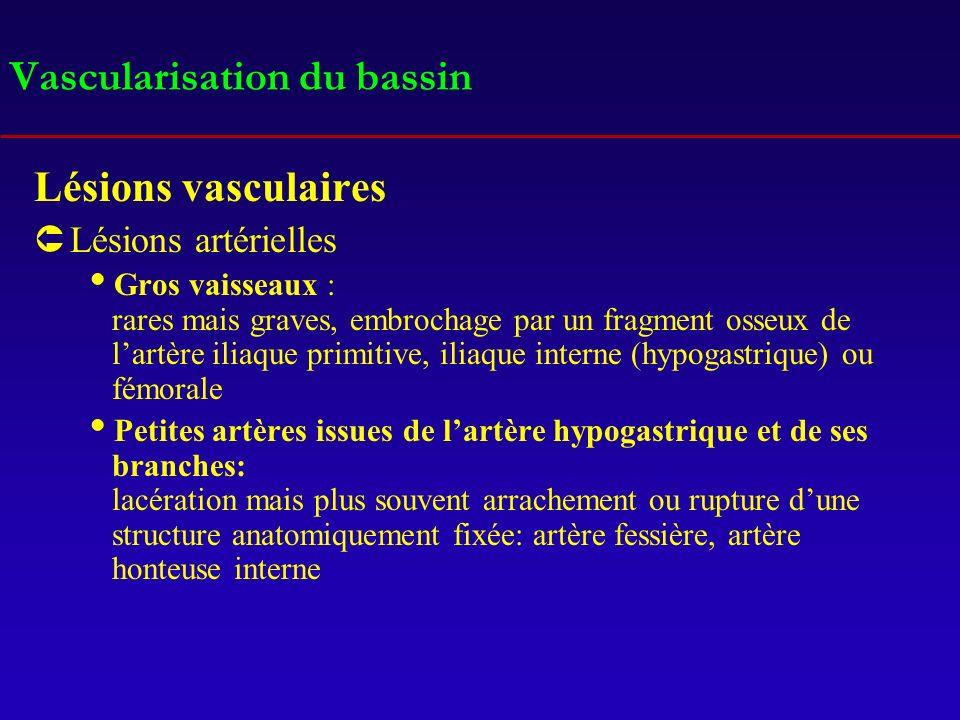 Vascularisation du bassin Lésions vasculaires ÛLésions artérielles Gros vaisseaux : rares mais graves, embrochage par un fragment osseux de lartère il