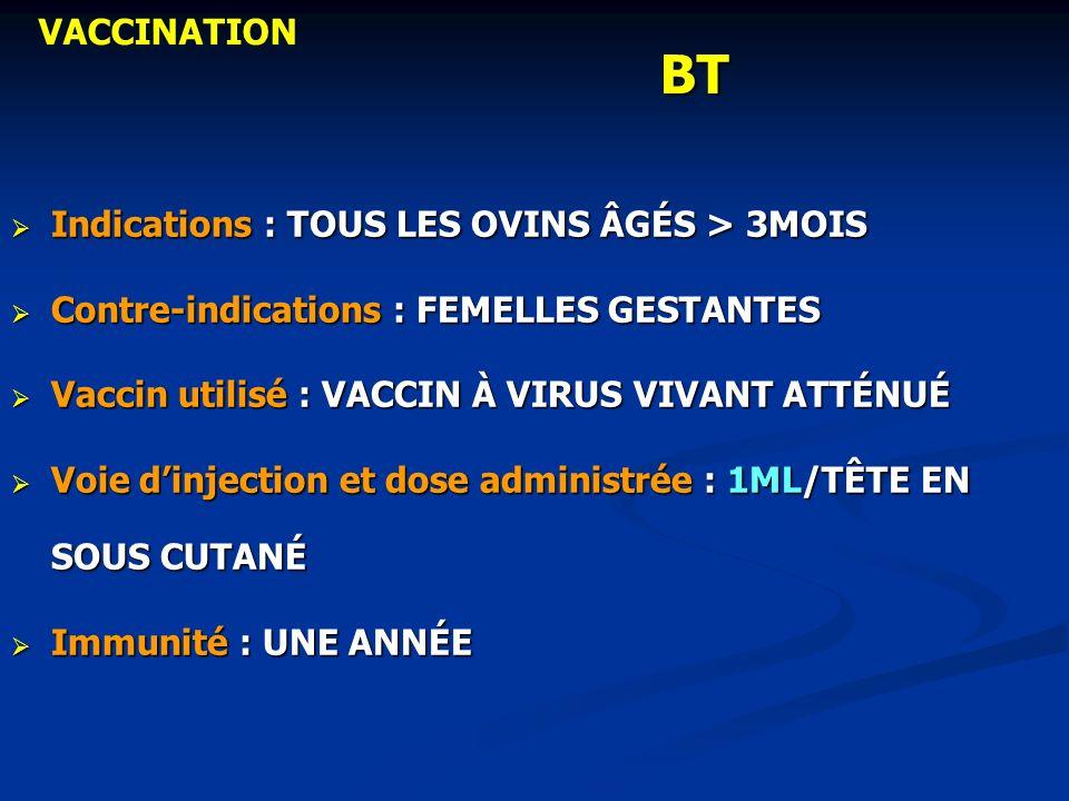 BT Indications : TOUS LES OVINS ÂGÉS > 3MOIS Indications : TOUS LES OVINS ÂGÉS > 3MOIS Contre-indications : FEMELLES GESTANTES Contre-indications : FE