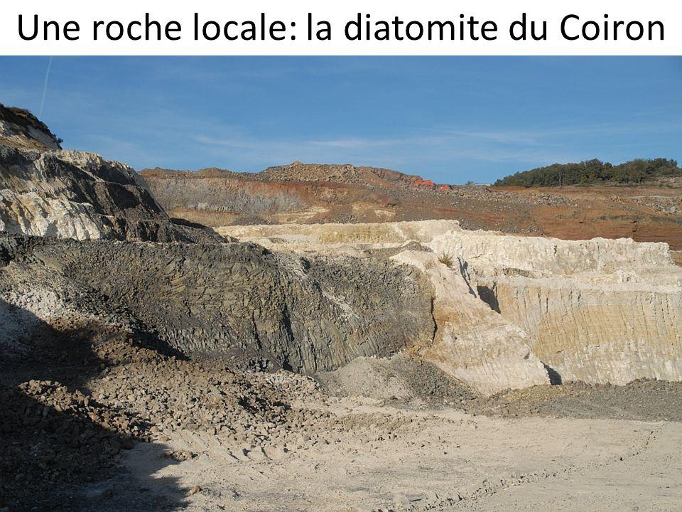 Une roche locale: la diatomite du Coiron