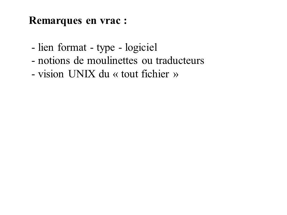 Remarques en vrac : - lien format - type - logiciel - notions de moulinettes ou traducteurs - vision UNIX du « tout fichier »