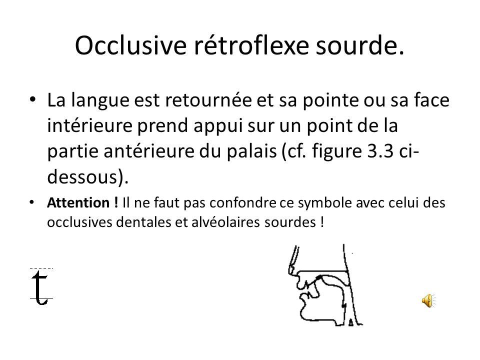 Occlusive rétroflexe sourde. La langue est retournée et sa pointe ou sa face intérieure prend appui sur un point de la partie antérieure du palais (cf