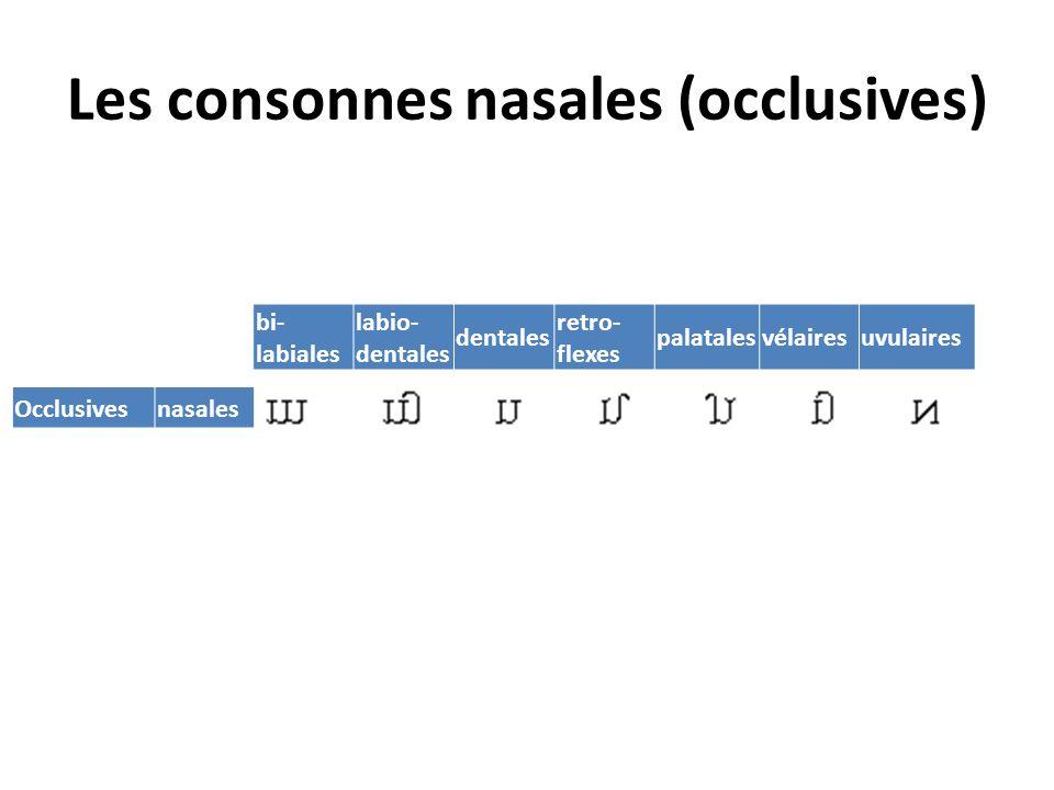 Occlusive rétroflexe sonore Même articulation que la précédente, mais avec vibration des cordes vocales.
