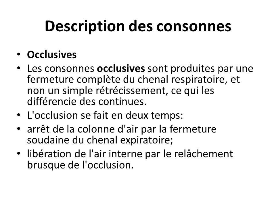 Description des consonnes Occlusives Les consonnes occlusives sont produites par une fermeture complète du chenal respiratoire, et non un simple rétré