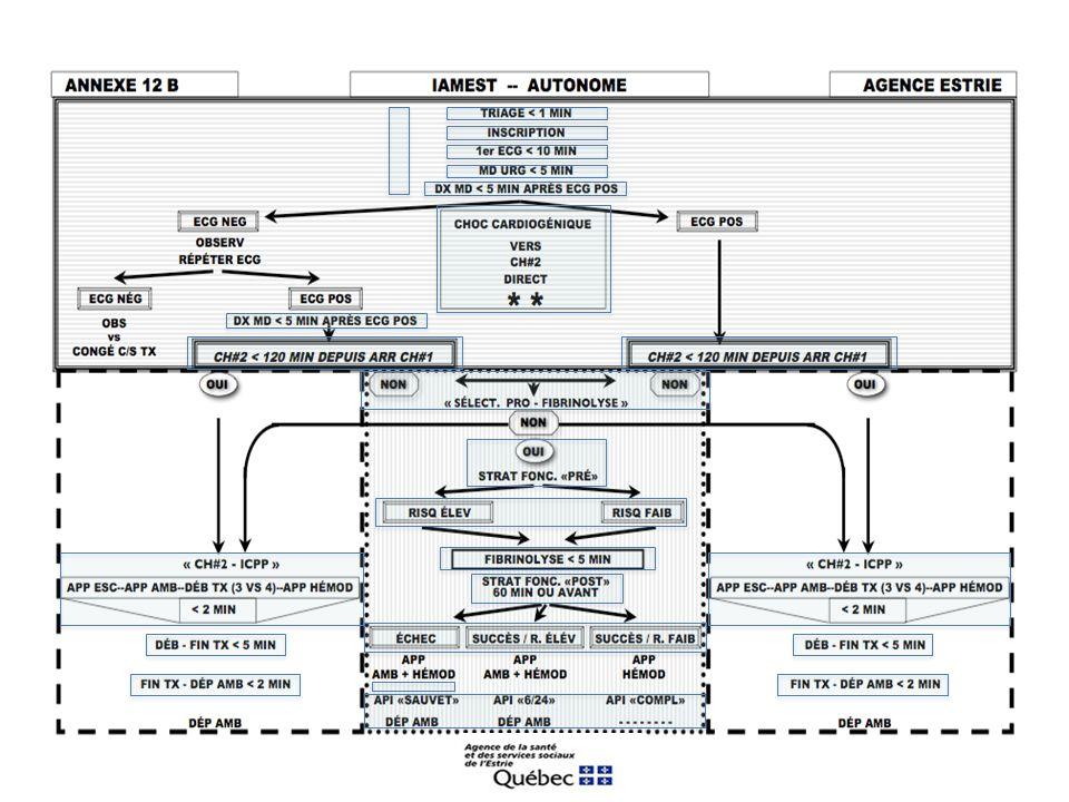 ANNEXE 16-4: GROUPE DE TRAVAIL IAMEST-AGENCE ESTRIE RECOMMANDATIONS «MILIEU INTRA HOSPITALIER» 16.