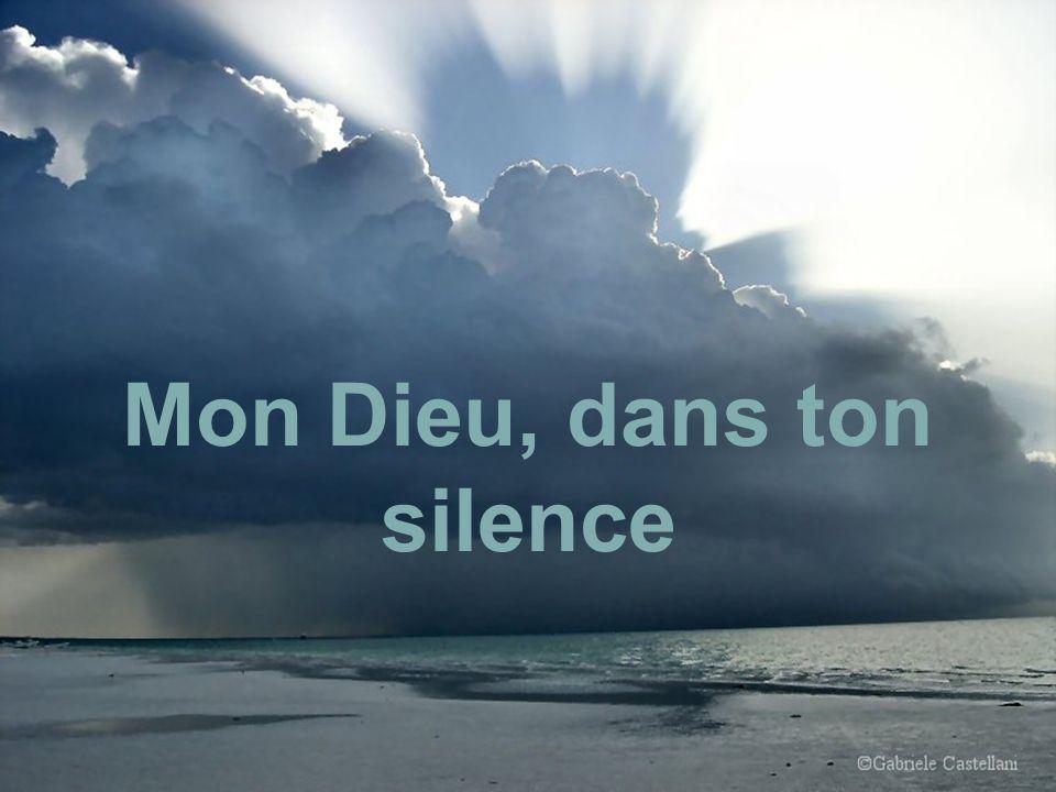 Mon Dieu Pitié pour la Vie…