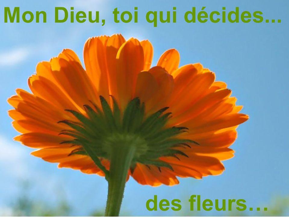 Mon Dieu, toi qui décides... des fleurs…
