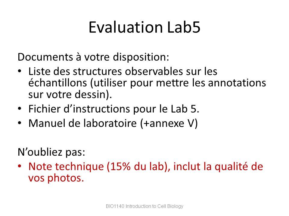 Evaluation Lab5 Documents à votre disposition: Liste des structures observables sur les échantillons (utiliser pour mettre les annotations sur votre d