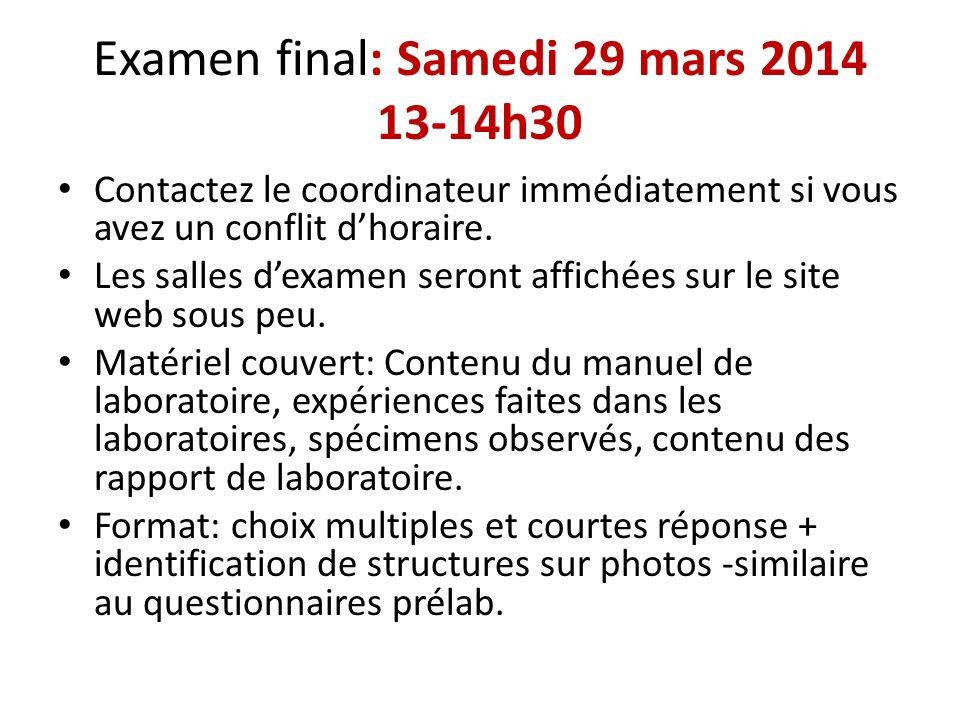 Examen final: Samedi 29 mars 2014 13-14h30 Contactez le coordinateur immédiatement si vous avez un conflit dhoraire. Les salles dexamen seront affiché
