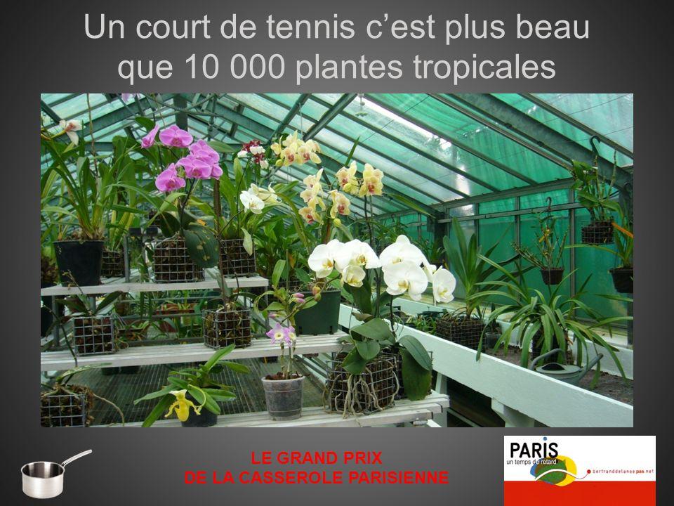 Un court de tennis cest plus beau que 10 000 plantes tropicales LE GRAND PRIX DE LA CASSEROLE PARISIENNE