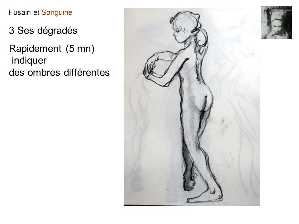 Fusain et Sanguine 3 Ses dégradés Rapidement (5 mn) indiquer des ombres différentes