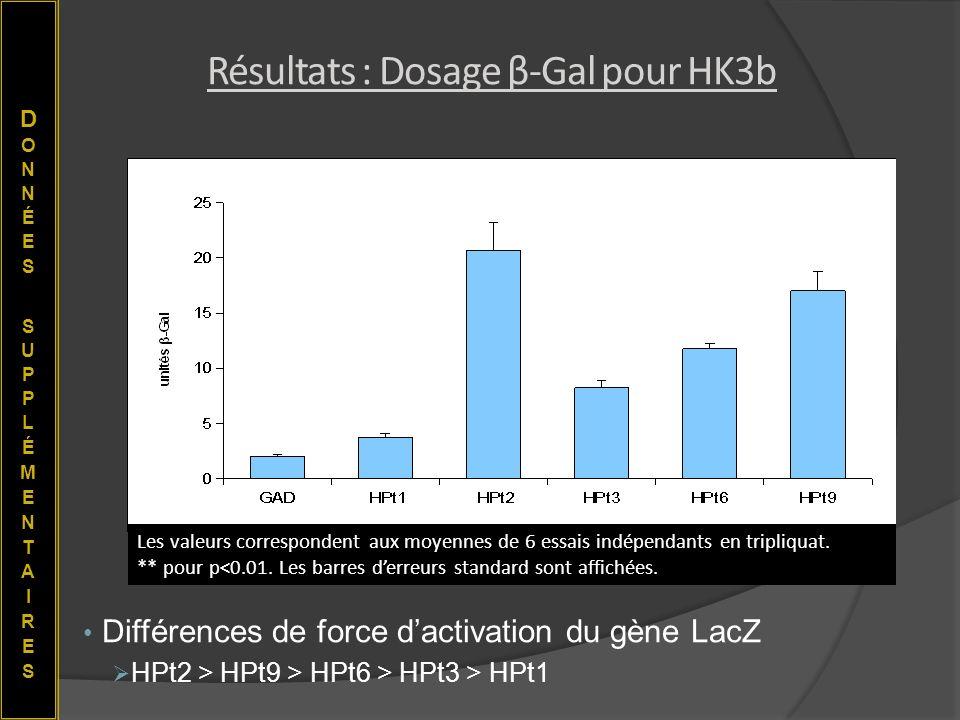 Résultats : Dosage β-Gal pour HK3b Différences de force dactivation du gène LacZ HPt2 > HPt9 > HPt6 > HPt3 > HPt1 ** Les valeurs correspondent aux moy
