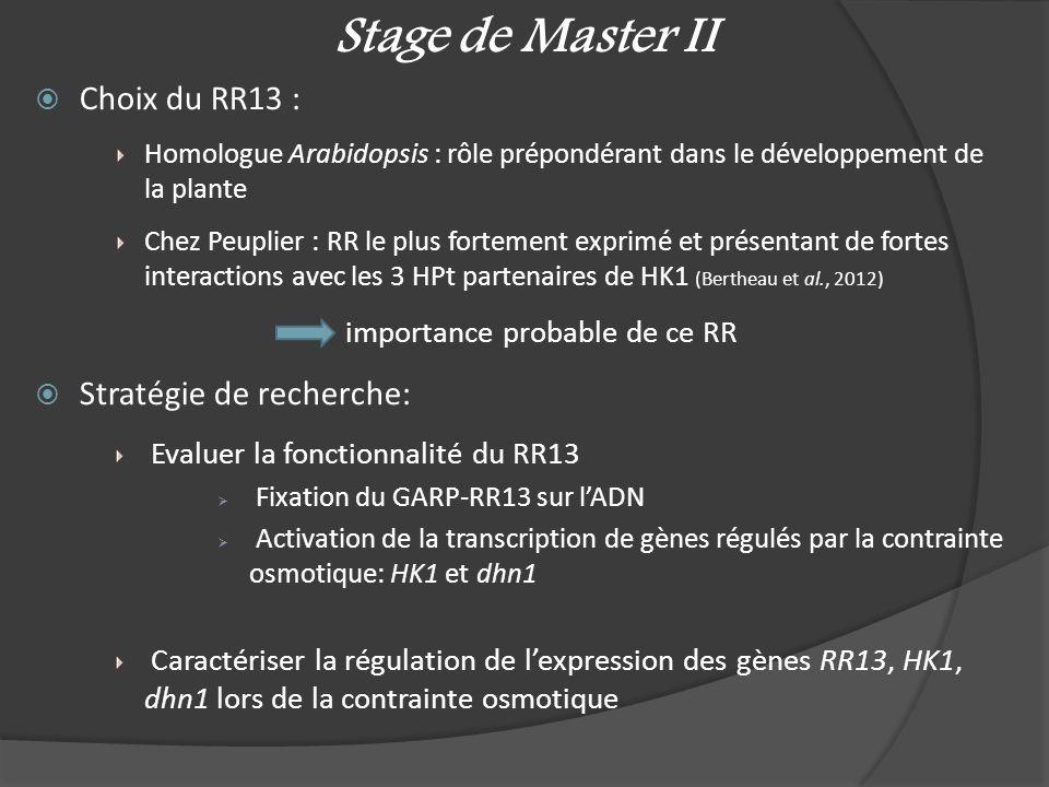 Stage de Master II Choix du RR13 : Homologue Arabidopsis : rôle prépondérant dans le développement de la plante Chez Peuplier : RR le plus fortement e