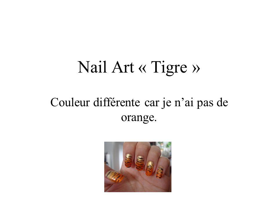 Nail Art « Tigre » Couleur différente car je nai pas de orange.