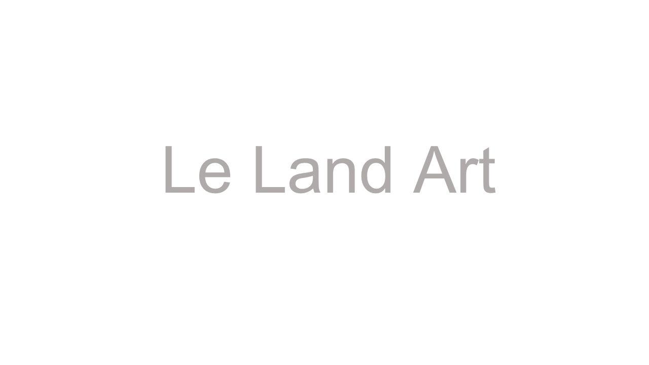 Le land art est une tendance de l art contemporain utilisant le cadre et les matériaux de la nature (bois, terre, pierres, sable, rocher, etc).