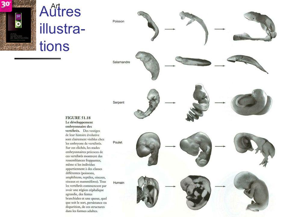 - TECFA UniGe Art - didactique - résultats- vérité -> citoyens responsables ? Chamonix - LDES UniGe Lombard F. 27 V 09 Autres illustra- tions