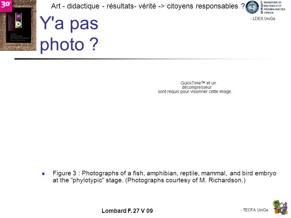 - TECFA UniGe Art - didactique - résultats- vérité -> citoyens responsables ? Chamonix - LDES UniGe Lombard F. 27 V 09 Y'a pas photo ? Figure 3 : Phot