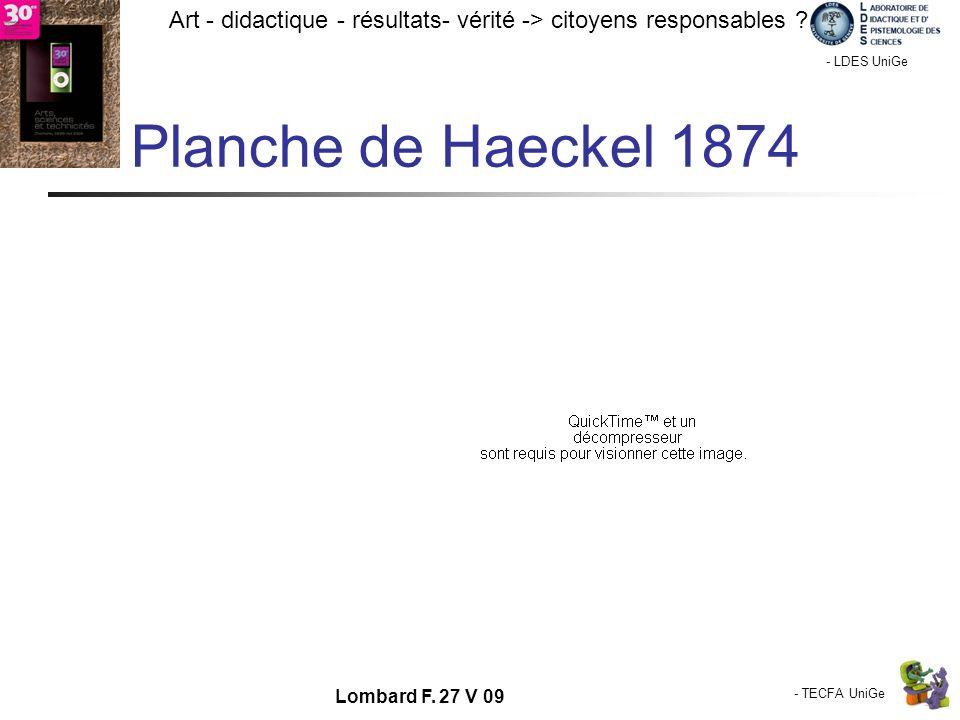 - TECFA UniGe Art - didactique - résultats- vérité -> citoyens responsables ? Chamonix - LDES UniGe Lombard F. 27 V 09 Planche de Haeckel 1874