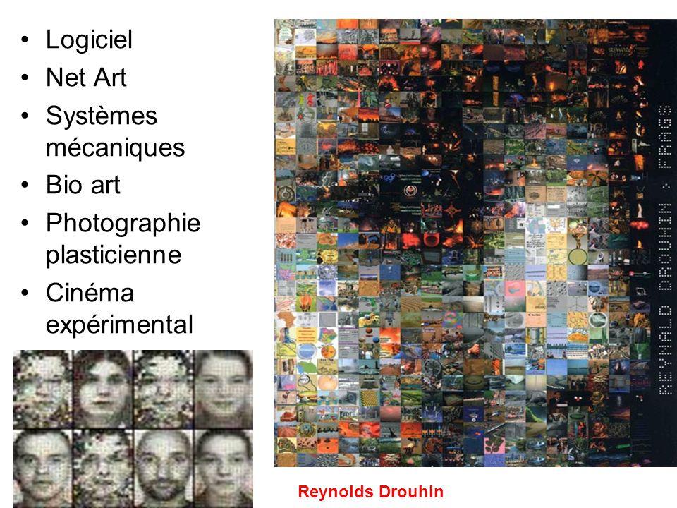 Logiciel Net Art Systèmes mécaniques Bio art Photographie plasticienne Cinéma expérimental Reynolds Drouhin