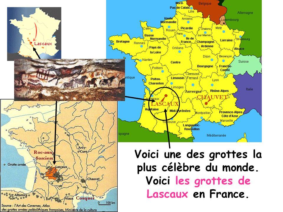 Voici une des grottes la plus célèbre du monde. Voici les grottes de Lascaux en France.