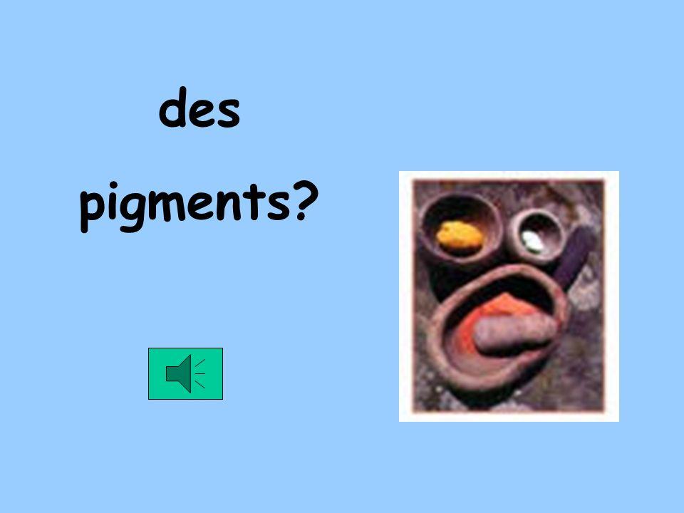 des pigments?