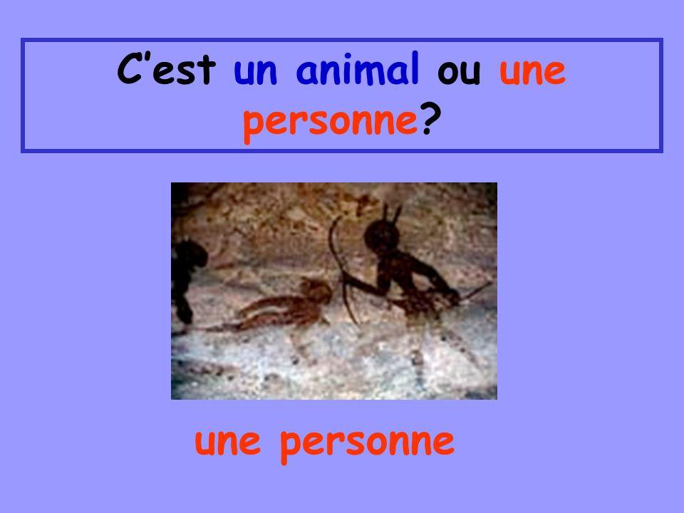 Cest un animal ou une personne? une personne