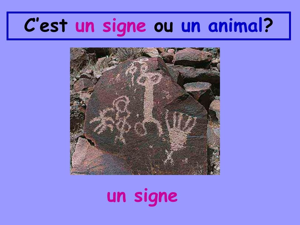 Cest un signe ou un animal? un signe