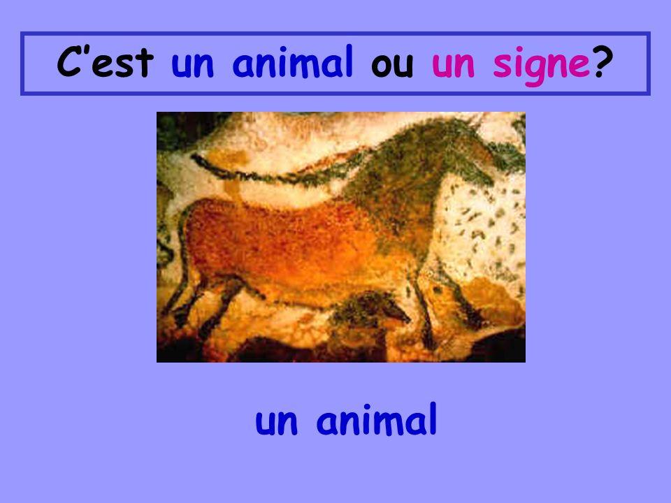 Cest un animal ou un signe? un animal