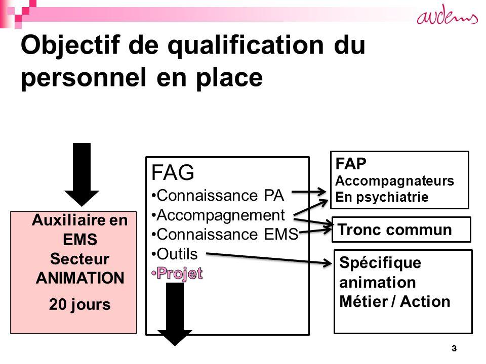 4 Objectif de qualification du personnel en place Auxiliaire en EMS Secteur ANIMATION 20 jours Animateur avec CFC ASE -Apprentissage - VAE -Article 32 Animateur responsable Module(s) de formation -Gestion déquipe -Gestion de projets