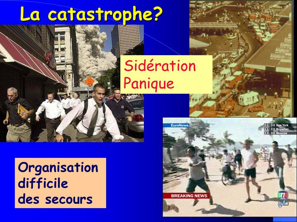 La catastrophe? Organisation difficile des secours Sidération Panique