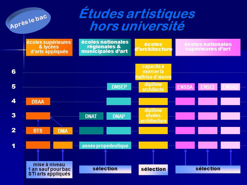 Études artistiques hors université 1 2 6 5 4 3 DSAA BTS DMA mise à niveau 1 an sauf pour bac STI arts appliqués mise à niveau 1 an sauf pour bac STI a