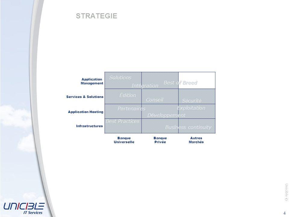Unicible © 4 STRATEGIE Banque Universelle Infrastructures Application Hosting Services & Solutions Application Management Banque Privée Autres Marchés