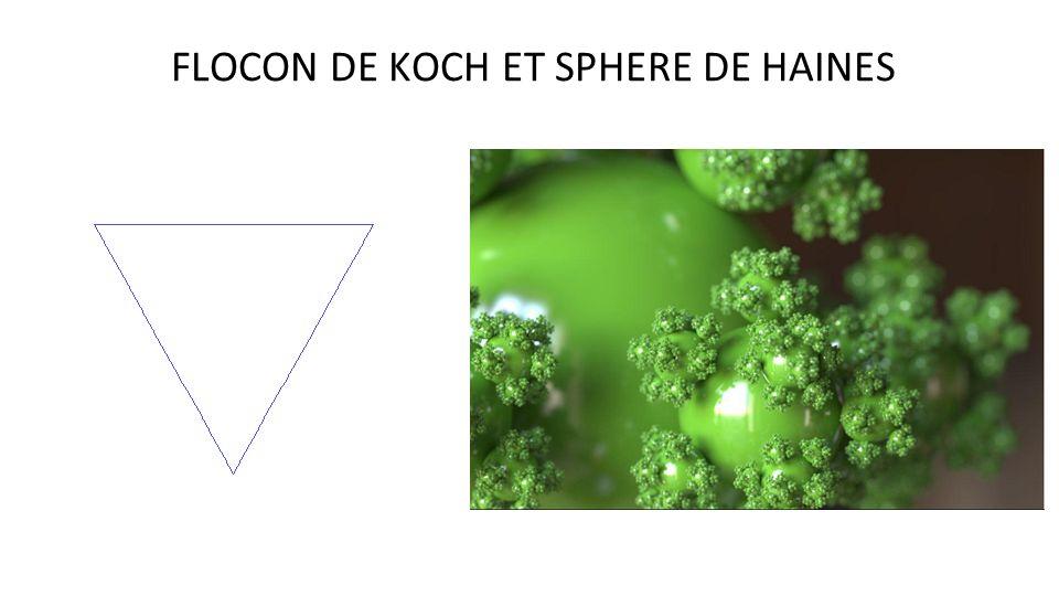 FLOCON DE KOCH ET SPHERE DE HAINES