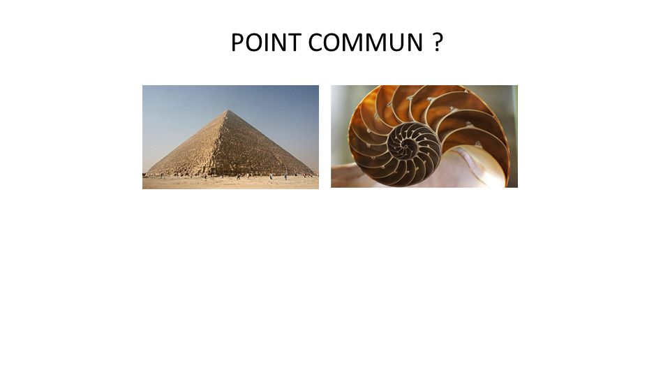POINT COMMUN ?